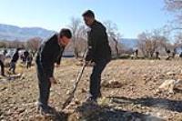 طرح بذرکاري بلوط در دامنه هاي پارک جنگلي چغاسبز با مشارکت انجمن هاي علمي دانشجويي دانشگاه ايلام انجام گرفت
